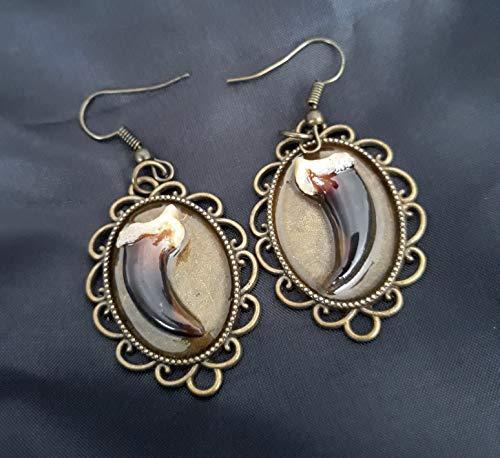 Fox Claw Earrings - Claw Earrings - Fox Earrings - Real Claw Earrings - Fox Claws - Fox Taxidermy - Taxidermy Jewelry - Fox Jewelry