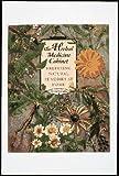 The Herbal Medicine Cabinet: Preparing Natural Remedies at Home