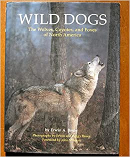 Wild Dogs: The Wolves, Coyotes, and Foxes of North America