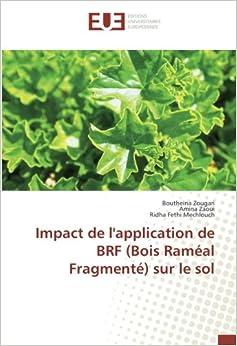 Impact de l'application de BRF (Bois Raméal Fragmenté) sur le sol