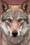 Website Password Organizer Wolf, Unique Journal, 1502765039