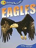Eagles, Sally Morgan, 1595661190