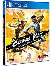 Cobra Kai : The Karate Kid Saga Continues
