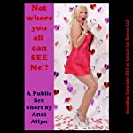 Not Where You All Can See Me!: A Reluctant Public Sex Short | Andi Allyn