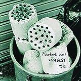 Market No.1 2005 Best'Briquette' (Digital Single)