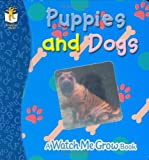Puppies and Dogs, Yvette Lodge, 1577911857