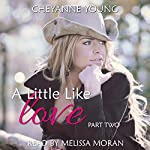 A Little Like Love : Robin and Tyler, Book 2 | Cheyanne Young