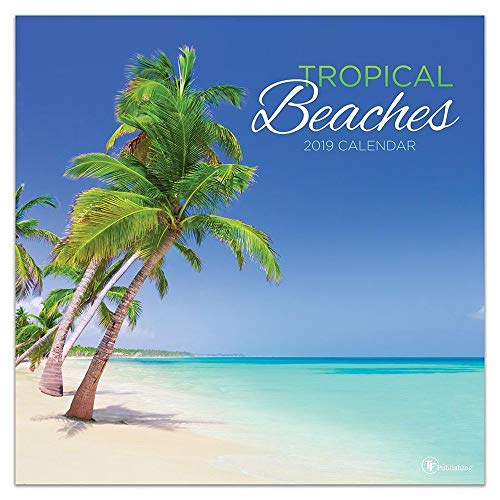 2019 Tropical Beaches Wall Calendar, Beaches by TF Publishing
