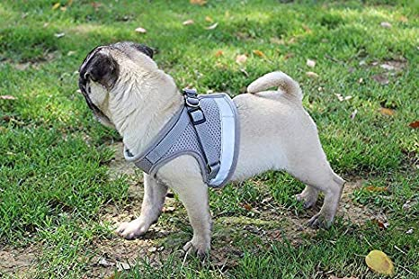 Cat Harness and Leash Escape Proof and Dog Harness Adjustable Soft Mesh Vest Harness for Walking with Reflective Strap for Pet Kitten Puppy Rabbit