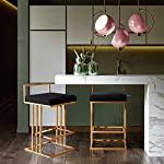 TOV-Furniture-The-Trevi-Collection-Contemporary-Velvet-Upholstered-Counter-Stool-Black