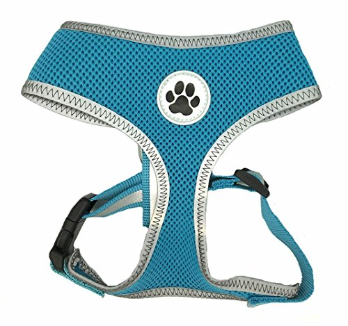 Lanyar Turquoise Reflective Mesh Soft Dog Harness Safe Harness No Pull Summer Pet Harnesses for Small Dogs,Medium Size