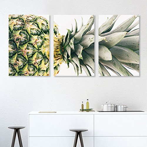 3 Panel Pineapple Gallery x 3 Panels