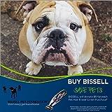 Bissell Pet Hair Eraser
