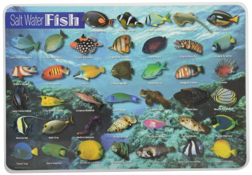 Tl Clark Painless Learning Saltwater Fish Placemat