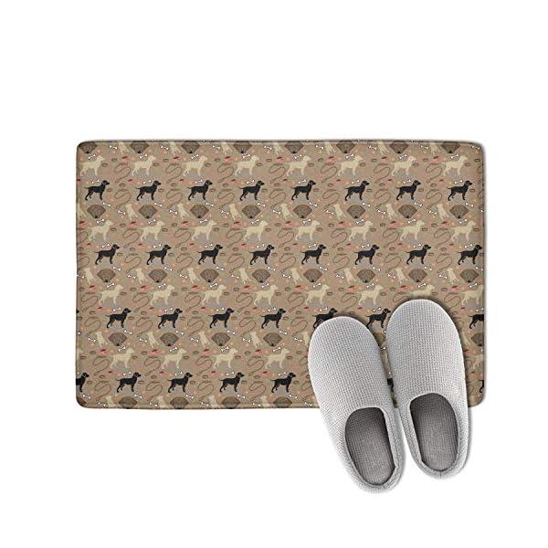 Unicorns Farting Non-Slip Indoor/Outdoor Doormat Border Collie Bone Dog Bathroom Rug Washable Super Cozy Velvet Floormat 2