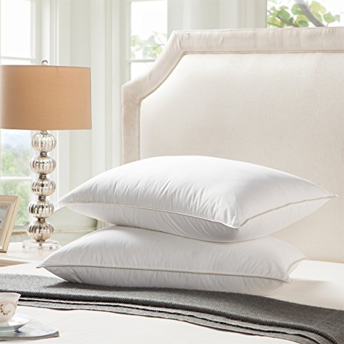 Egyptian Bedding Goose Down Pillow - 1200 Thread Count Egyptian Cotton , Standard / Queen Size (Egyptian Cotton Pillow)