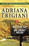 Big Stone Gap; Big Cherry Holler, Adriana Trigiani, 0345486617