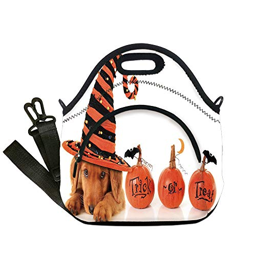 Insulated Lunch Bag,Neoprene Lunch Tote Bags,Halloween,Cute Puppy Wearing a Witch Hat Trick or Treat Little Bats Festive Funny,Orange Black Brown,for Adults and children