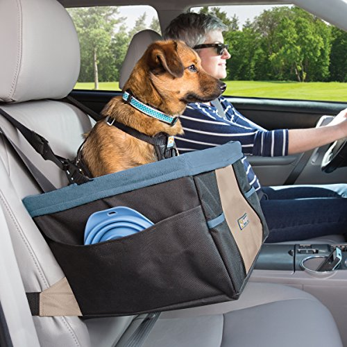 Kurgo Rover Booster Dog Car Seat with Seat Belt Tether, Black/Blue by Kurgo (Image #3)