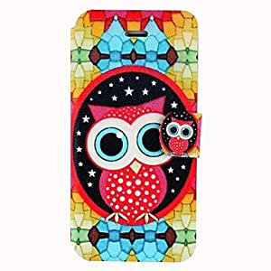SHOUJIKE Lovely Owl Pattern Clamshell PU Leather Full Body Case with Card Slot for iPhone5/5S