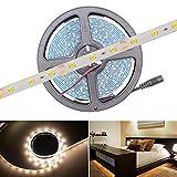 HitLights, Guirnalda de luces LED, 300LEDs, 5m, Blanco