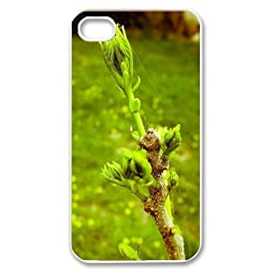 Buds For Apple Iphone 4/4S Case Cover Beautiful tree buds Cheap For Boys, Cell Phone Cases For Apple Iphone 4/4S Case Cover , [White]