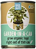 Back to the Roots Garden in a Can Grow Organic Sage, 2 Count