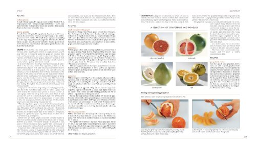 New Larousse Gastronomique Hamlyn 8601404226052 Amazon Books