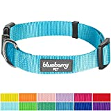 """Blueberry Pet Classic Dog Collar, Medium Turquoise, X-Small, Neck 7.5""""-10"""", Nylon Collars for Dogs"""