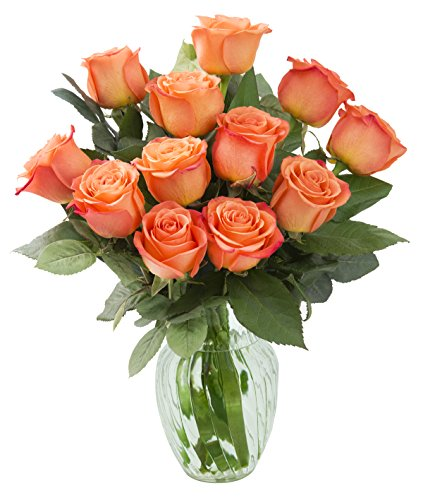 KaBloom Bouquet of 12 Fresh Cut Orange Roses (Long Stemmed) with - Is Day Next Special Delivery