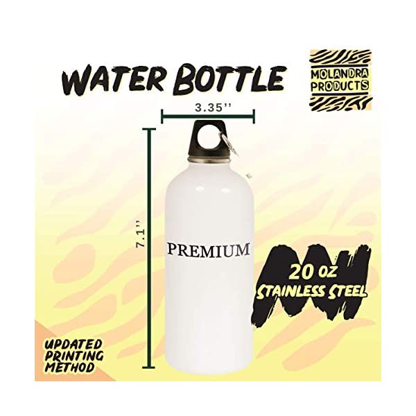 got spaniel? - 20oz Stainless Steel White Water Bottle with Carabiner, White 3
