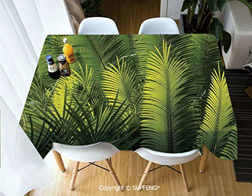 Rectangular Tablecloth Plam Tree Foliage Tropical Plant Leaves Forest Theme Exotic Natural Beauty Image (60 X 84 inch) Great for Buffet Table, Parties, Holiday Dinner, Wedding & More.Desktop decorati
