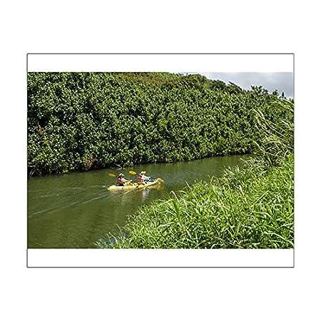 10x8 Print of Kayaking on the Wailua River, Kauai, Hawaii