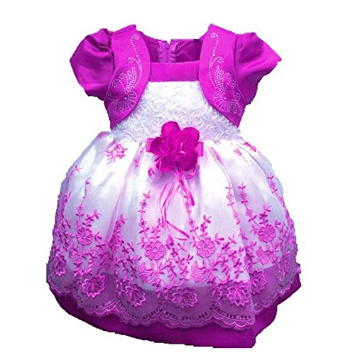 Girls Princess Puff (Verypoppa Baby Girls Puff-Sleeve Floral Embroidery Princess Tulle Tutu Dress (0-1 Years, Rose Red))