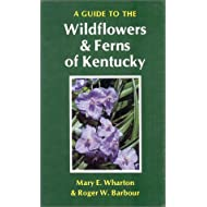 A Guide to the Wildflowers and Ferns of Kentucky (Kentucky Nature Studies)