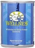 Wellness Super5Mix – Whitefish & Sweet Potato – 12 x 12.5 oz Review