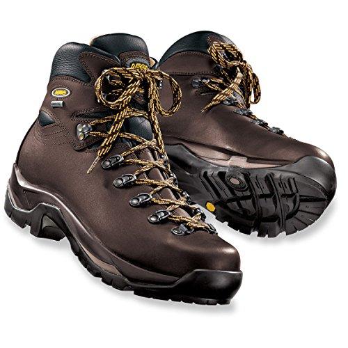 Asolo Men's TPS 520 GV EVO Chestnut Boot 9 E