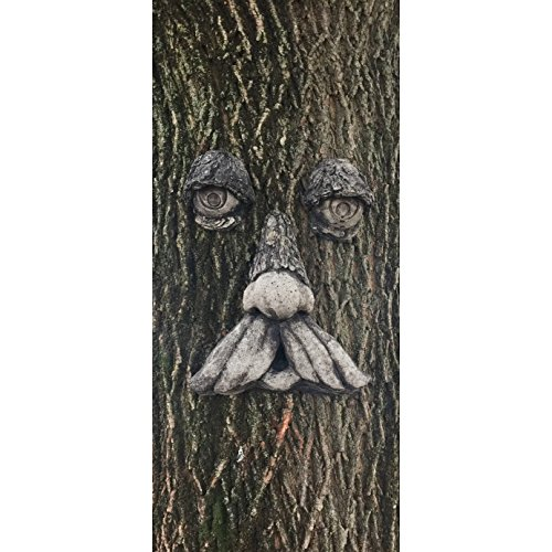 Concrete Collective Mountain Man Tree Face (Weathered) by Concrete Collective