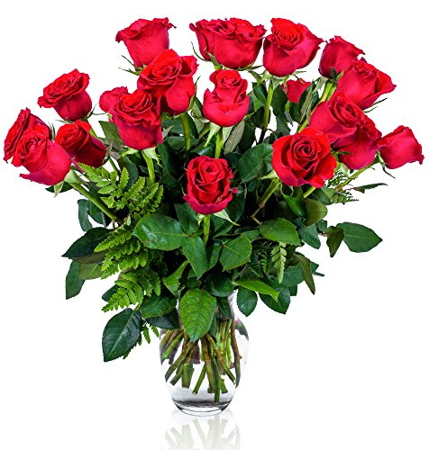 FLWERZ [Touch of Elegance] Two Dozen Classic Aromatic Beautiful Blooming Red Roses Gorgeous Long Stem Fresh-Cut Hand-Made Luxury Bouquet Arrangement of Rose Flowers w/ Free clear 8 oz Vase