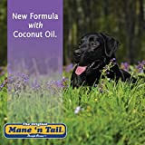 Mane 'n Tail Ultimate Gloss Combo Set for The