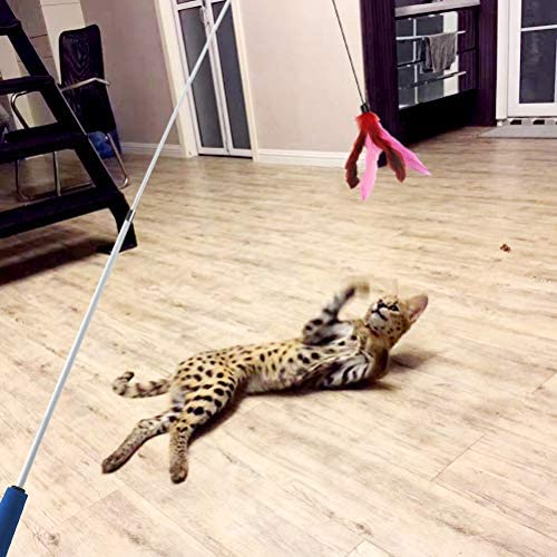 Cat Toys Interactive Cat Feather Wand, Kitten Toys 2pcs Retractable Cat Wand Toy & 7pcs Natural Feather Teaser Replacements with Bell, Telescopic Cat Fishing Pole Toy for Indoor Kitty Old Cat Exercise 3