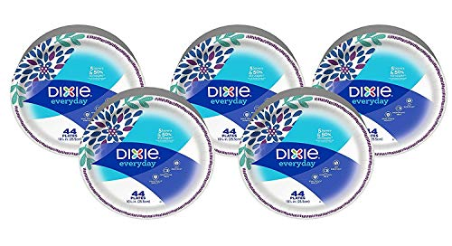 """Dixie Everyday Paper Plates,10 1/16"""" Plate, 220 Count, Amazon, 5 Packs of 44 Plates, Dinner Size Printed Disposable Plates (440 Count)"""
