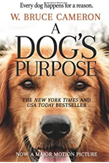 Marley me life and love with the worlds worst dog john grogan a dogs purpose a novel for humans fandeluxe Images