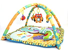 Little Archer & Co.™ Baby Floor Activity Play Gym, Great for Learning and Play During Awake Time