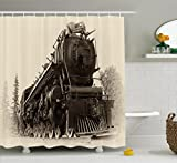 Ambesonne Steam Engine Shower Curtain Set by, Antique Northren Express Train Canada Railways Photography Freight Machine Print, Fabric Bathroom Decor with Hooks, 75 Inches Long, Black Grey