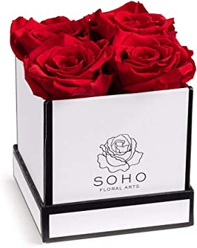 Preserved Roses in a White Square Gift Box that last!