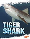 Tiger Shark, Deborah Nuzzolo, 1429654155