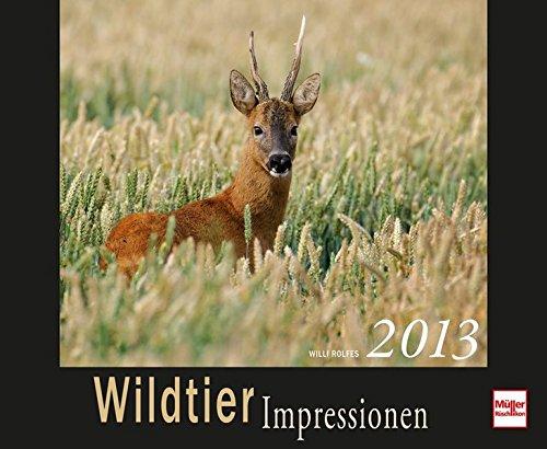 Wildtierimpressionen 2013: Kalender