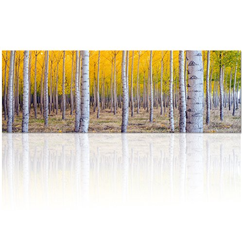 Visual Art Decor Xlarge Canvas Prints Golden Autumn Birch Forest Scenery Picture Home Wall Decor Framed and Stretched Ready to Hang Image Decoration (YellowXlarge) - Autumn Art Print