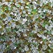 Safe & Non-Toxic 4 Pound Bag of Clear Gravel & Pebbles Decor Made of Genuine 100% Recycled Glass for Freshwater & Saltwater Aquarium w/ Eco Friendly Shiny Non Sharp Style [Green, Brown & Orange]